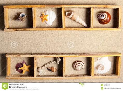 Marine Shelf by Marine Shelf Stock Photo Image 57025901
