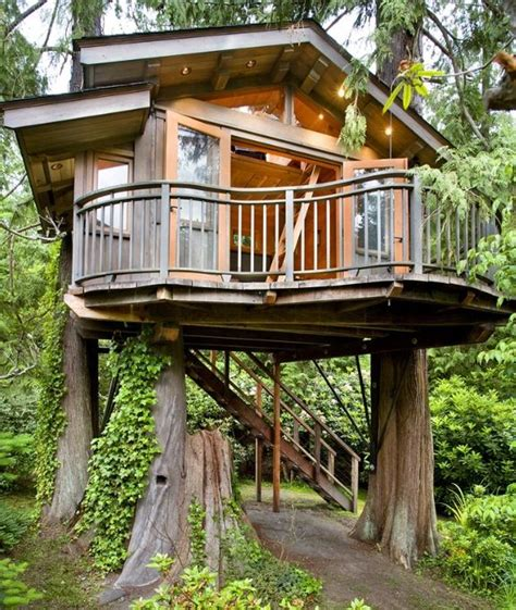 crazy tree houses crazy tree house architecture pinterest