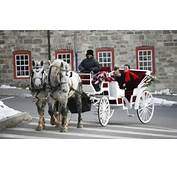 Carriage Rides Christmas Hours