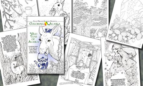coloring books for adults subscription 450 deluxe custom package youll receive a 1 year print