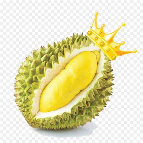 durio zibethinus thai cuisine fruit food snack durian