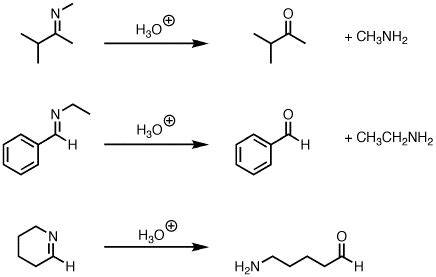 difference b w hydration and hydrolysis hydrolysis of imines to give ketones or aldehydes