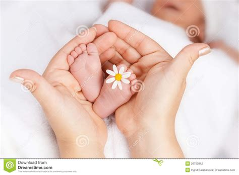 lovely white lovely infant foot with little white daisy stock photo