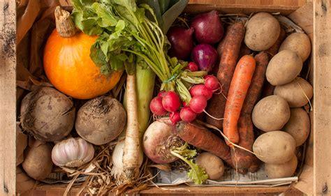 winter cold storage  vegetables