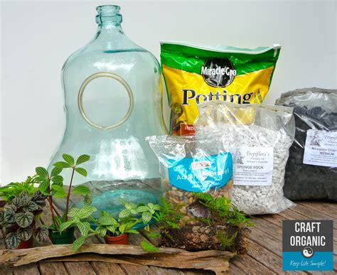 terrarium or vivarium craft organic