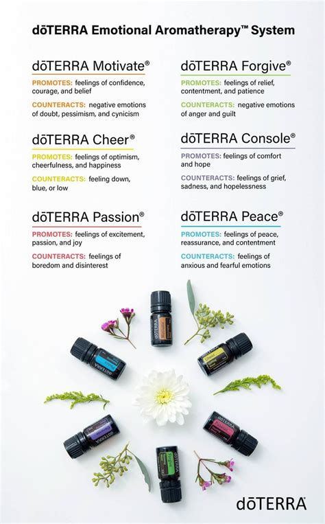 Emotional Detox Essential Oils by Best 25 Doterra Ideas On Essential Uses