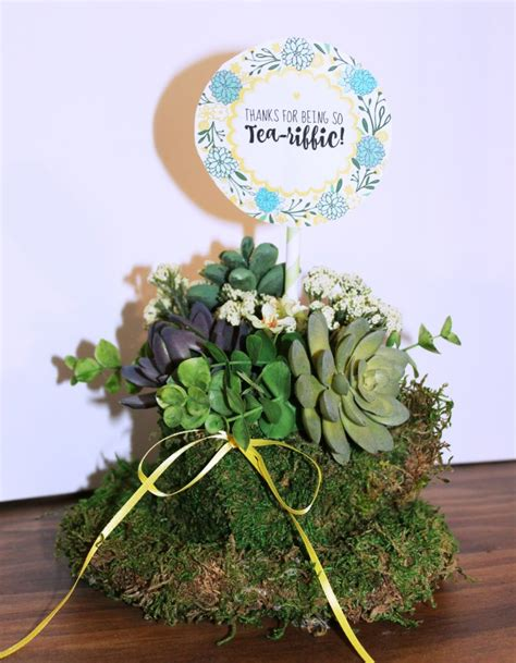 succulents planters how to make an easy and unique tea cup succulent planter