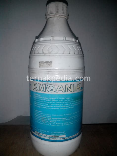 Pakan Ikan Lele Surabaya produk prebiotik ikan lele yang sedang saya gunakan