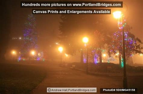 esther short park christmas tree vancouver wa photo