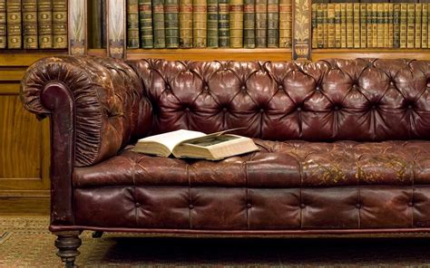 library couch no div 227 jornal mat 233 ria prima