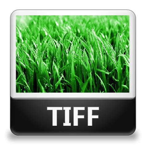 tiff image interactive media terminology interactivemediasw