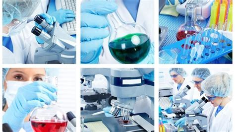 Mba In Biotechnology In Canada by Personalized Career Guidance Counseling For Ug Pg Mba