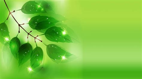 green hd wallpaper best fresh background image use lives 45 hd green wallpapers backgrounds for free download