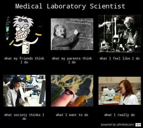 Lab Tech Meme - medical laboratory scientist what we really do lettin