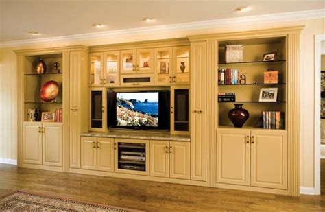 Custom Cabinets For Closets by Entertainment Center In Large Alcove Space Traditional