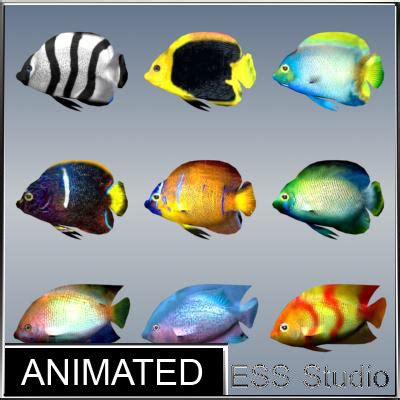 Indecent Tropical Fish Vol 2 tropical fishes 4 max