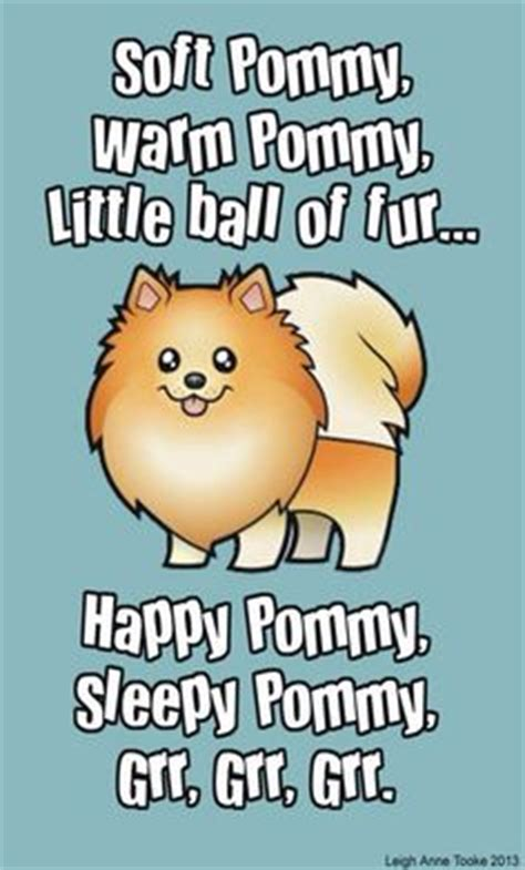pomeranian quotes pomeranian husky miniature quotes