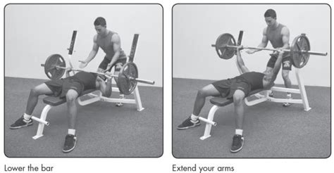 bench press correct form how to lose weight men