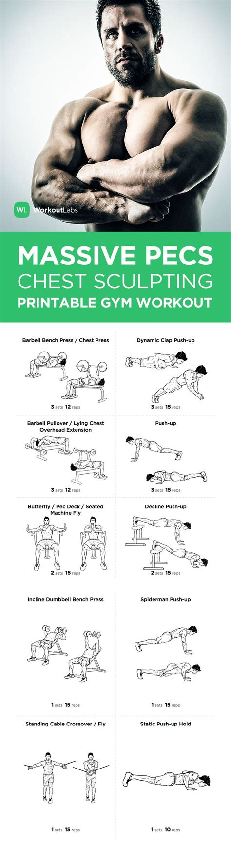 free pdf pecs chest sculpting workout for