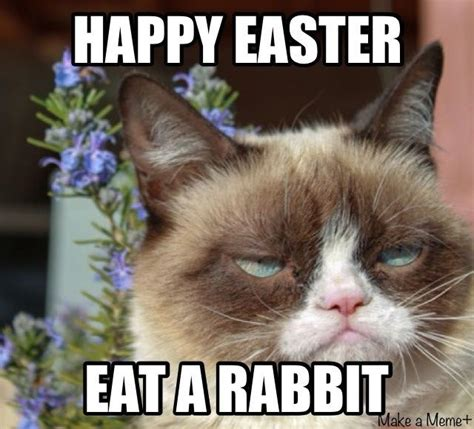 Funny Happy Easter Memes - happy easter grumpy cat pictures photos and images for
