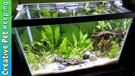 HOW TO setup a 20 Gallon Planted Aquarium ??? Substrate
