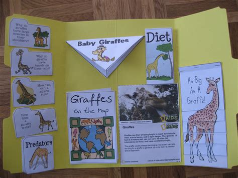 libro the babys lap book giraffe lapbook precious treasures