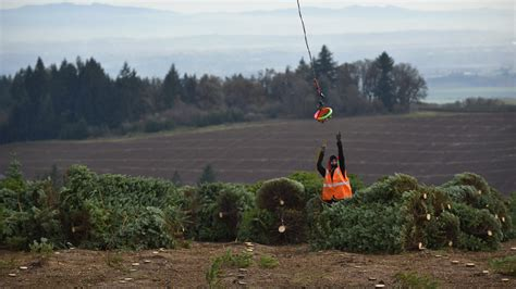 noble christmas mountain helicopter harvest spreads cheer aopa