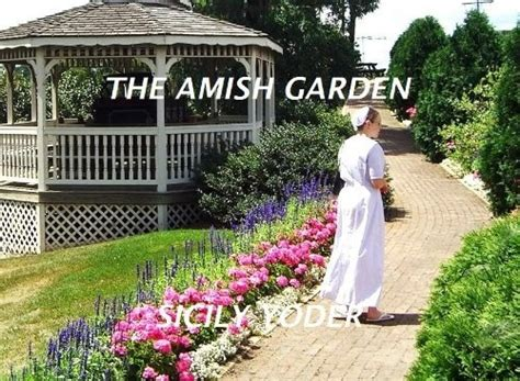 the amish and garden amish outcasts books 10 best images about the amish garden series on