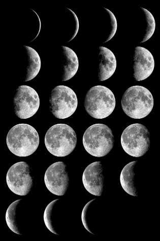 Cyberphysics: Phases of the moon