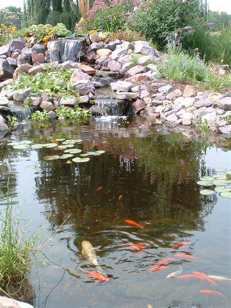 Backyard Pond by Charmed Dreaming Of A Backyard Pond