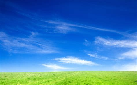 wallpaper hd blue sky blue sky and green grass wallpapers hd wallpapers id