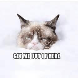 Grumpy Cat Snow Meme - grumpy cat get me out of here