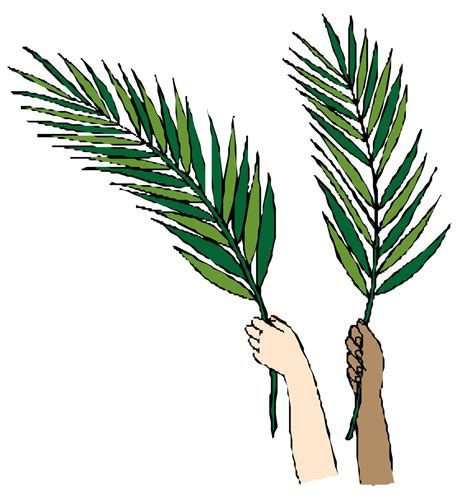 free printable palm leaves palm leaves clip art cliparts co