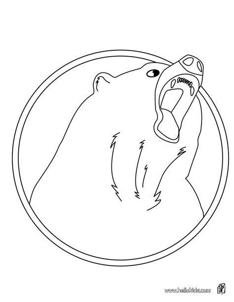 stunning animal faces colouring pages car pictures for