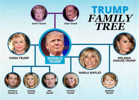 Donald Trump Family Tree | who is donald trump the next us president s life and