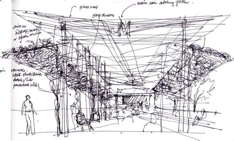 New Studio C Sketches by A New Series Featuring Laurie Olin Acclaimed Landscape