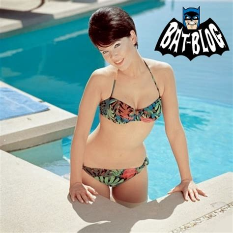 9 Sexiest Tv And Vires by Bat Batman Toys And Collectibles Photo