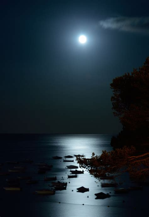 By The Light Of The Moon by By The Light Of The Silvery Moon By Cricketumpire On Deviantart
