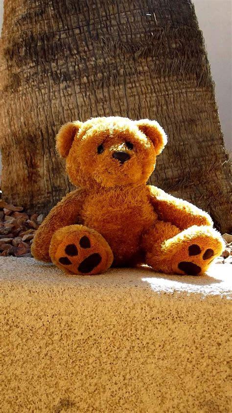 cute teddy bear iphone  wallpapers tap