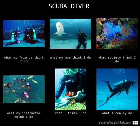 Scuba Diving Meme - 95 best images about scuba on pinterest roxy scubas