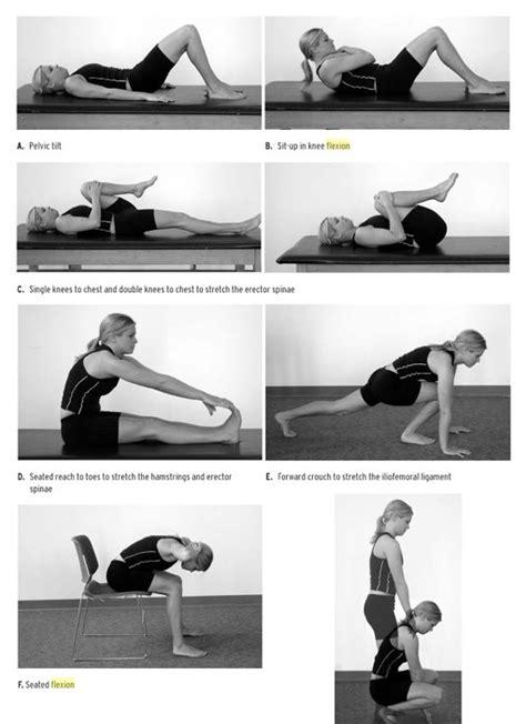 williams flexion exercises
