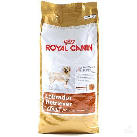 royal canin labrador puppy royal canin labrador retriever food