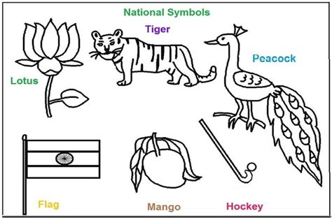 National Bird Of India Outline by National Symbols Of India Coloring Printable Pages Holi Festival Of Colors India