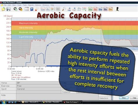 Cd Aerobic Fitness Dll 02 research papers on aerobic fitness in football eassyforex x fc2