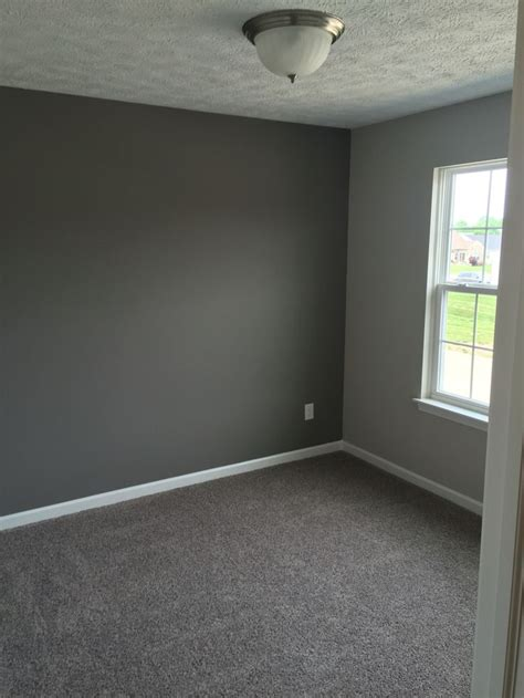 grey wall color best 25 carpet colors ideas on