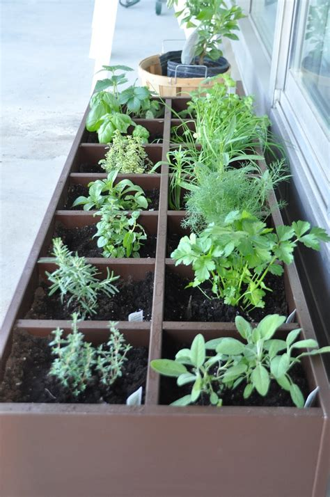 patio herb garden inspiration and design ideas for