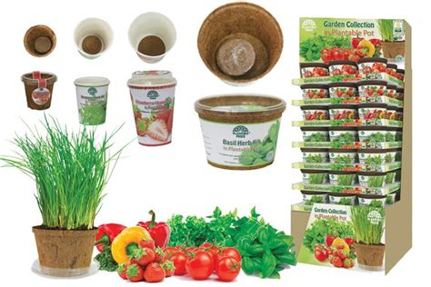 Grow Cup grow your own cups tomato pepper strawberry basil