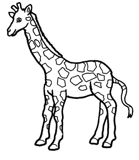 giraffe coloring pages crayola giraffe coloring page 01 clinicals pinterest animales