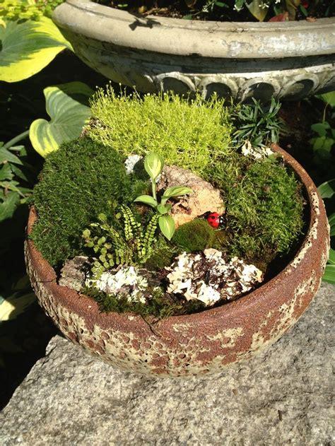 Moss Garden Ideas Another Miniature Moss Garden Containers Moss Garden Gardens And Garden Ideas