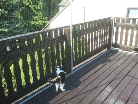 terrasse katzensicher gro 223 e dachterrasse in bochum katzensicher gestalltet